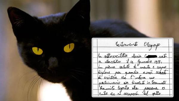 gato herencia
