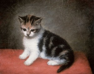 BAL4870 Miss Ann White's Kitten, 1790 by Stubbs, George (1724-1806); 25.4x30.5 cm; Roy Miles Fine Paintings; English, out of copyright
